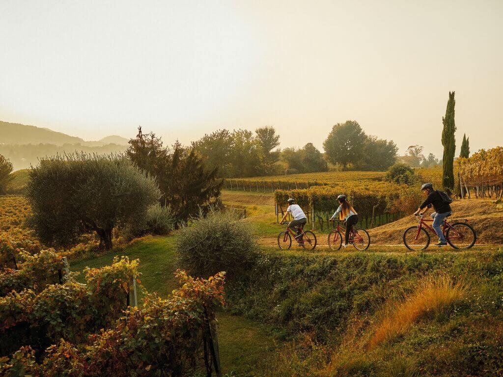 © Switzerland Tourism / Giglio Pasqua