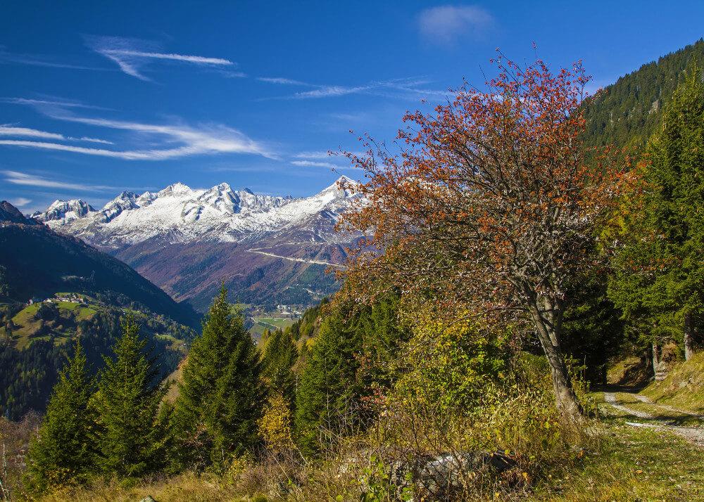 Valle Leventina (Bild: Dreamstime)