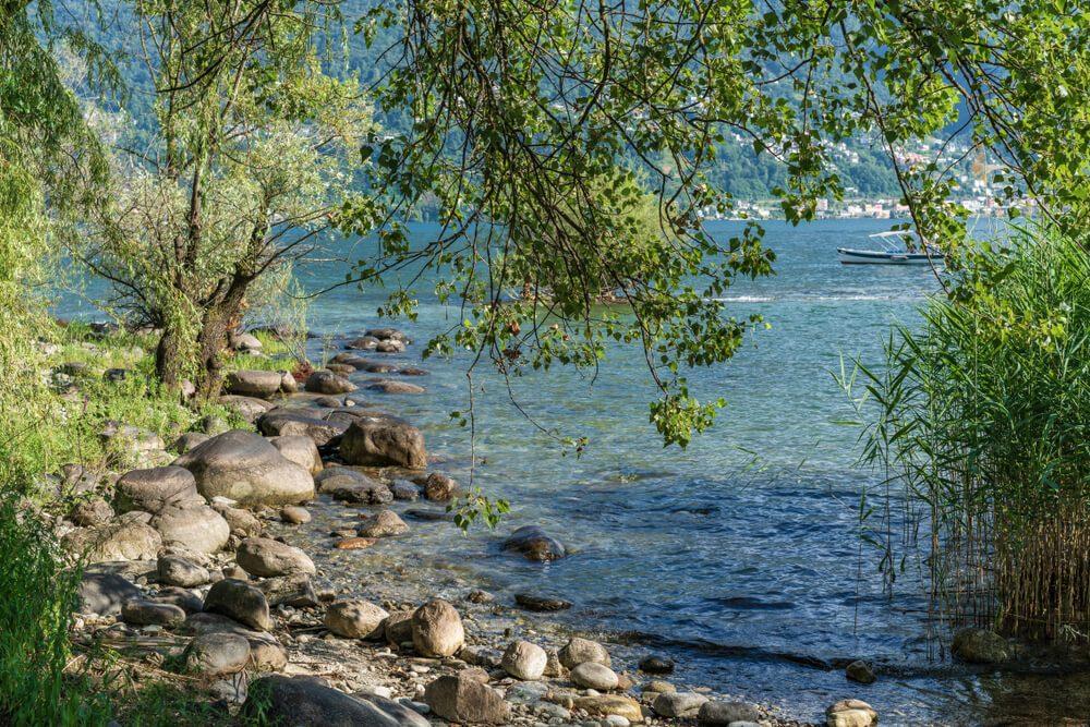 Naturstrand Ascona (Bild: Ksenia Molina - shutterstock.com)